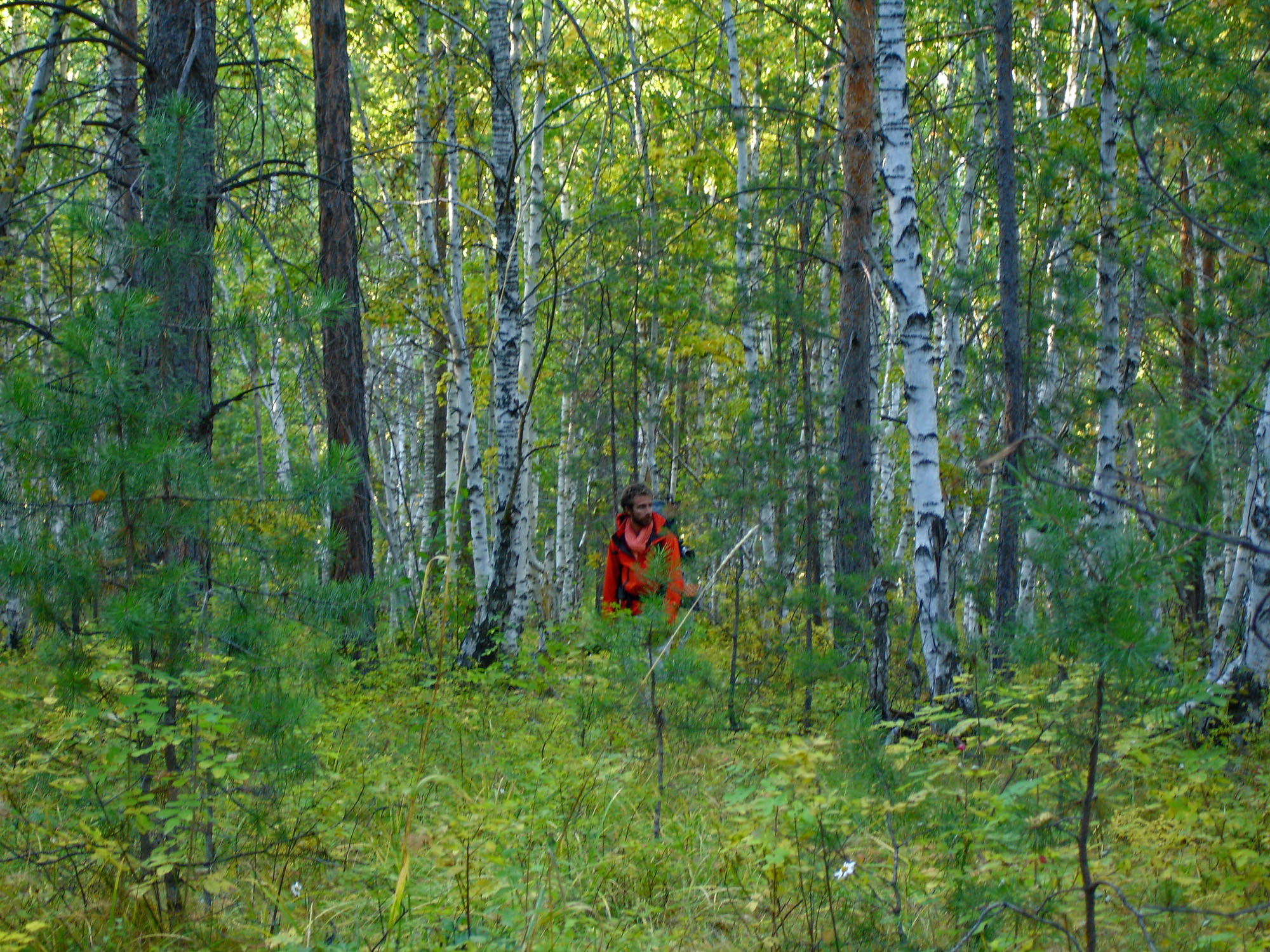Finding our way in taiga forest